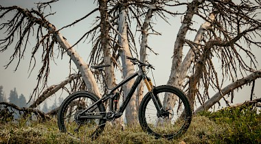 Trek released Remedy trail bike update!