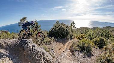 TEST: NORCO AURUM HSP 1